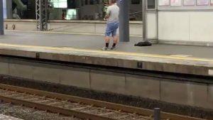 京阪電車守口市駅にて特急に爆竹投げる男現れる!